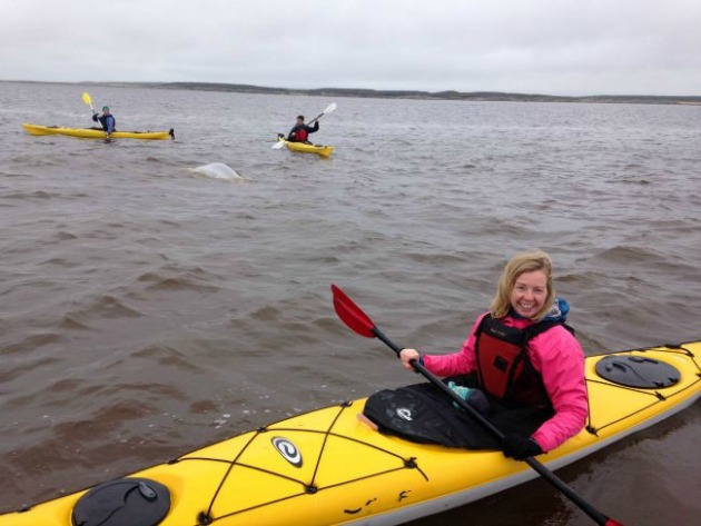 Jody Robbins kayaking with belugas