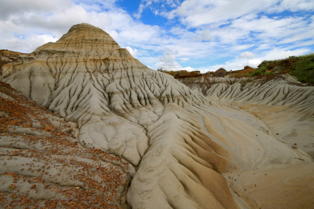 Dinosaur Provincial Park: Why you need to here now!