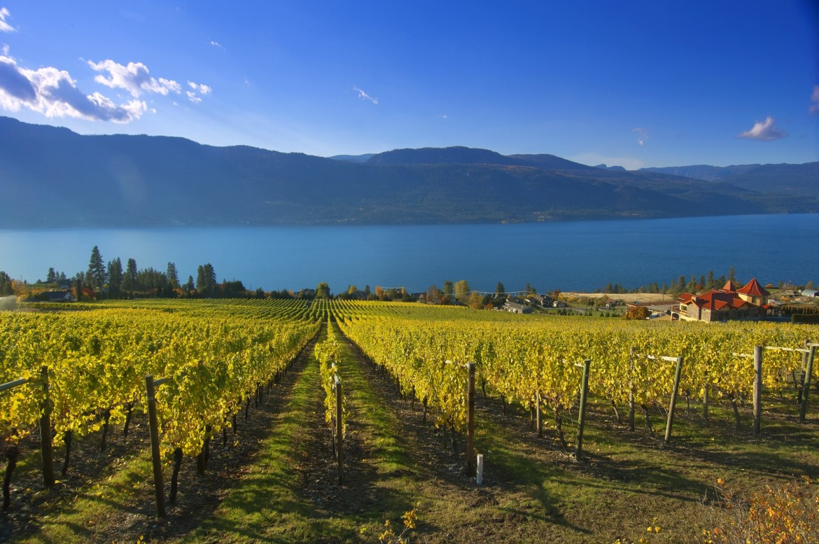Solved! Lake Okanagan wineries that are worth visiting