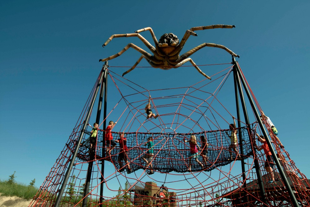 animal themed playground