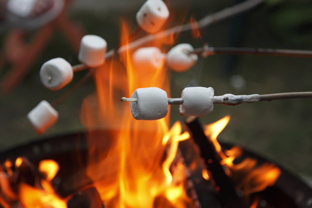 posh marshmallows for glamping