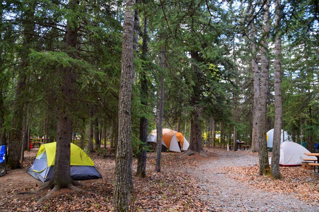 wapiti camping canmore