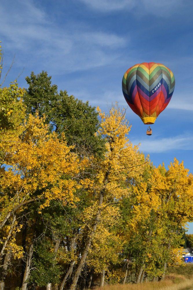 Heritage Inn International Balloon Festival vertical