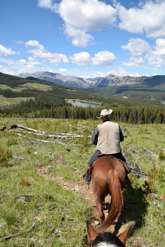 best things to do in sundre