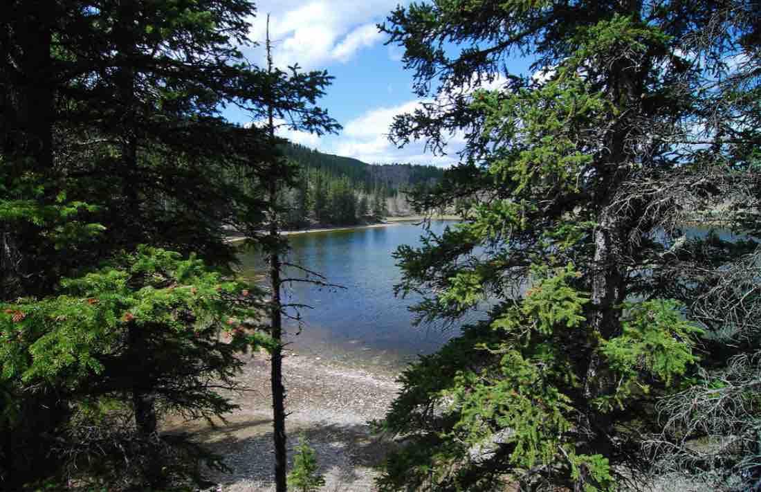 sibbald_lake_beach