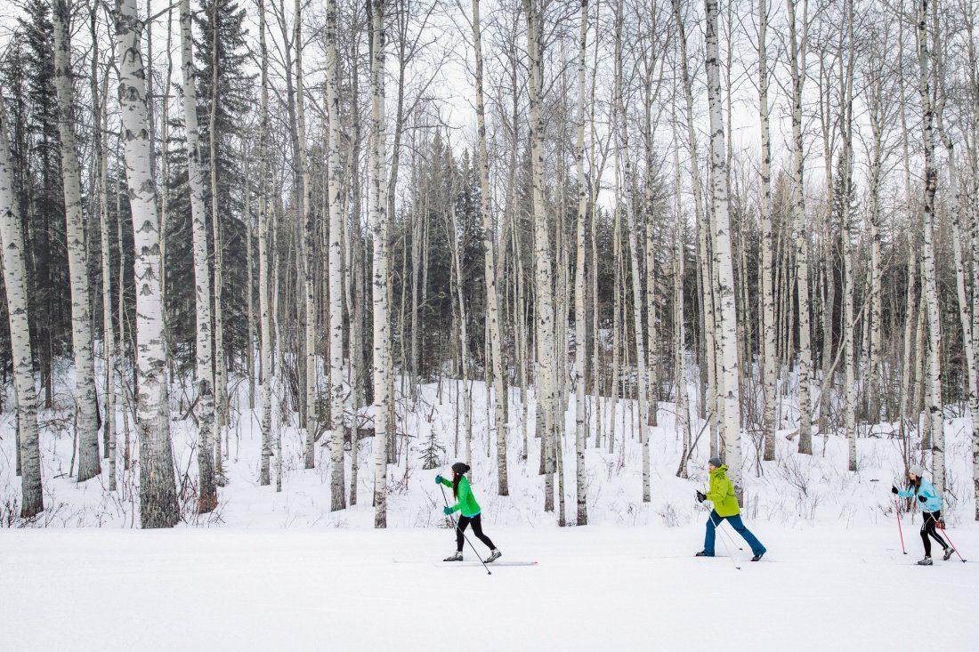 calgary skiing