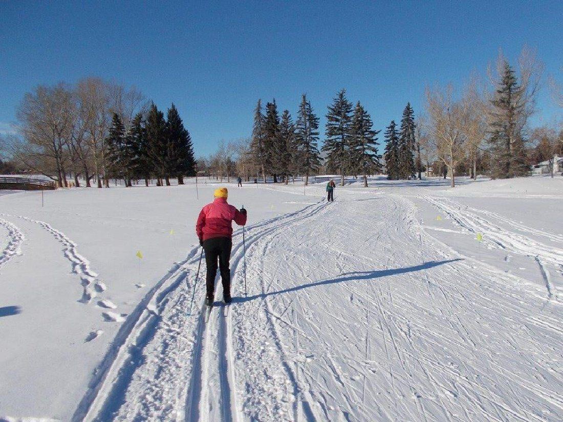 cross country skiing at Maple Ridge