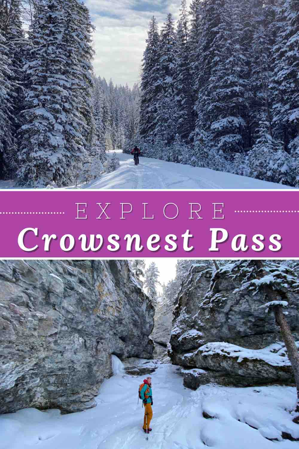crowsnest pass in winter