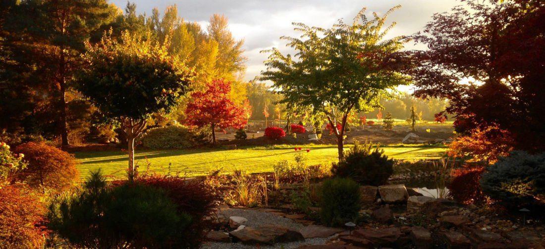 autumn garden bd