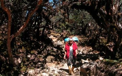 Onderweg, Dzongri Trek, Sikkim, India, 2009