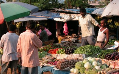 Markt in Jaigaon, West-Bengalen, India, 2009