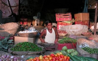 Markt in Jaigaon, West-Bengalen, India, 2009