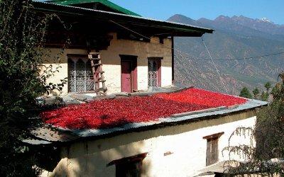 Bhutan, chilipepers zijn het basisingrediënt in elk Bhutanees gerecht