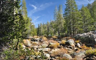 USA - Yosemite NP, impressie hike Yosemite Creek naar Yosemite Valley