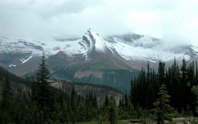 Een van de zeldzame uitzichten tijdens verregende hike Iceline Trail, Yoho NP. Canada, 2008
