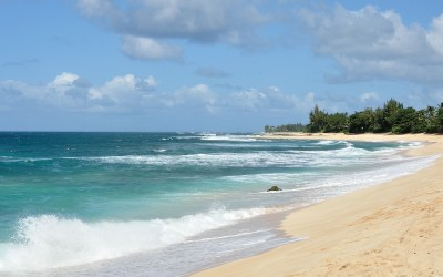 Northshore, Oahu, Hawaii, 2011