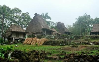 Ngada dorp Belahragi, Flores, Indonesië, 2012