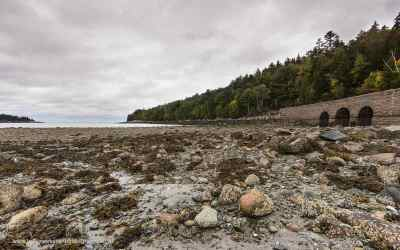 Otter Cove, Acadia NP, USA, 1-10-2015