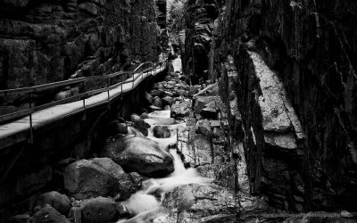 Flume Gorge, Franconia State Park NH, USA, 6-10-2015