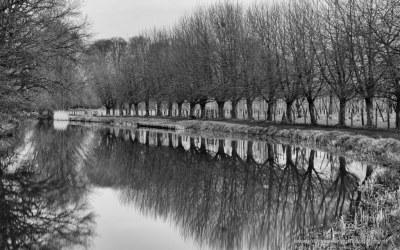 Jaagpad langs Kromme Rijn, Bunnik, 12-2-2016