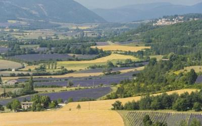 Val de Sault, Provence, Frankrijjk, 10-7-2016