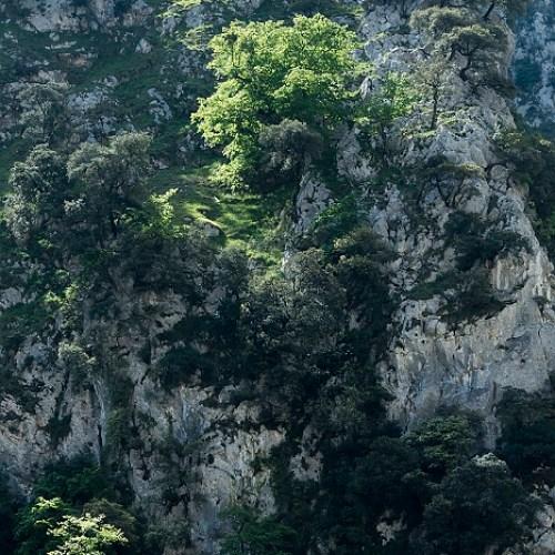 Onderweg tijdens de wandeling Ruta del Cares, Picos de Europa, Spanje, 21-5-2018