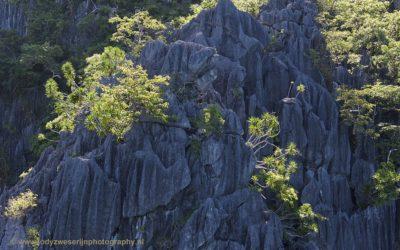Kalkstenen rotsformaties, Coron, Filipijnen, 29-11-2017
