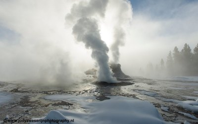 Grotto Geyser, Yellowstone, USA, 29-1-2019