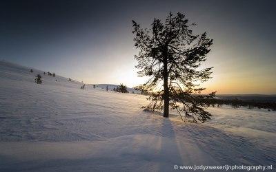 Pallas, Finland, 26-1-2020