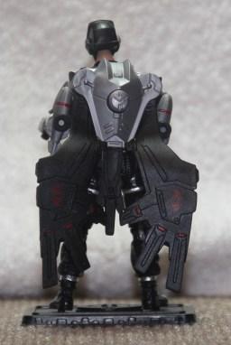 Black Vulture 03