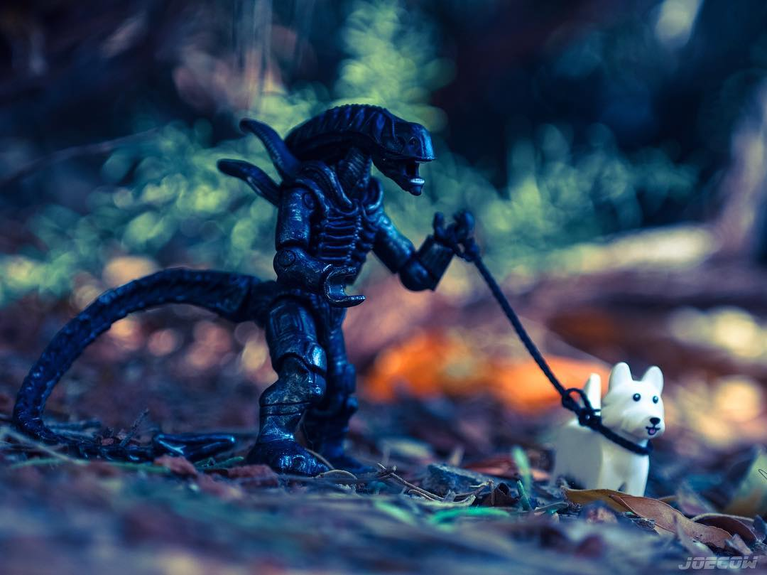 Xenomorph Murph - an alien walks a dog