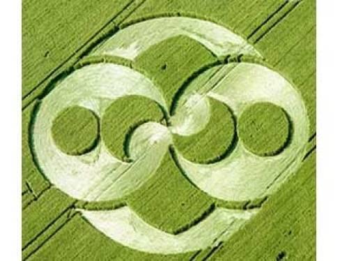 crop circle square circle