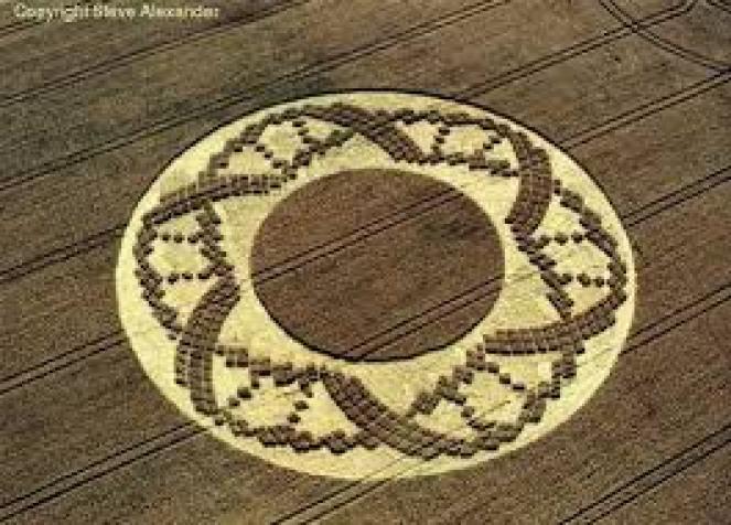 Crooked Soley Crop Circle 504 792