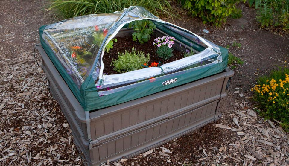 Go to Are Raised Bed Gardens Suitable for Berries?