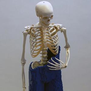 mr-bones-7-300x300