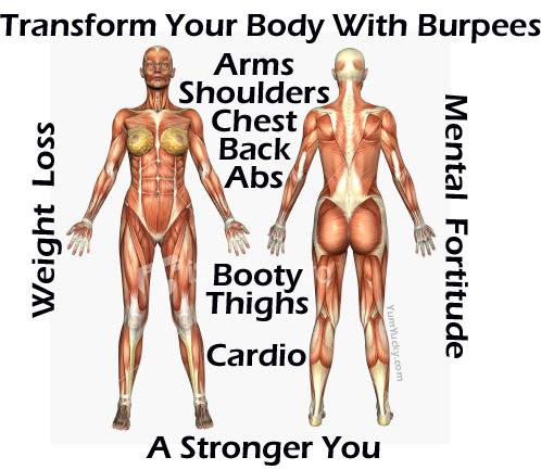 Burpee Benefits