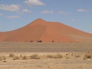 20040317 03 Namibia C14