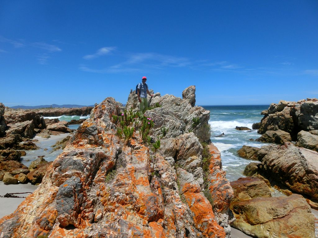 20161126-003-hermanus-cliff_path_skulpiesbaai