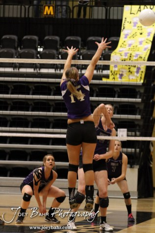 Wilson Lady Dragon Antjelica Pfannenstiel (#14) goes to block a shot from Weskan Lady Coyote Kelsey Hale (#9) during the Wilson versus Weskan KSHSAA Class 1A Division II State Volleyball Pool II match with Weskan winning 26-24, 25-12 in Hays, Kansas on October 26, 2012. (Photo: Joey Bahr, www.joeybahr.com)