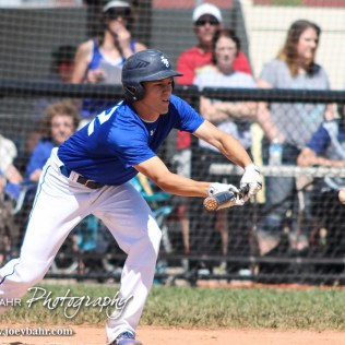 St. Mary's Colgan Panther Dominic Piccini (#22) lays down a bunt. The St. Mary's Colgan Panthers win the KSHSAA Class 2-1A State Baseball Championship over the Medicine Lodge Indians by a score of 13 to 3 at the Great Bend Sports Complex in Great Bend, Kansas on May 28, 2016. (Photo: Joey Bahr, www.joeybahr.com)