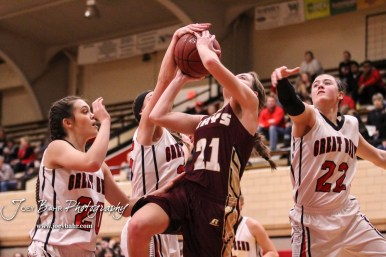 Great Bend Lady Panther #25 Carly Dreiling reaches for the ball as Hays Lady Indian #21 Savannah Schneider goes up for a layup. The Great Bend Lady Panthers defeated the Hays Lady Indians by a score of 54 to 41 at Great Bend High School in Great Bend, Kansas on January 10, 2017. (Photo: Joey Bahr, www.joeybahr.com)