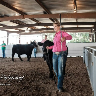 4-H members participate in the 2018 Rush County Fair Beef Show held at the Rush County Fairgrounds in LaCrosse, Kansas on August 3, 2018. (Photo: Joey Bahr, www.joeybahr.com)