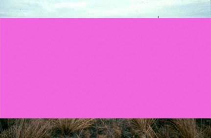 20080211-206Reseededmixedprairie-HaysCounty,NE copy.google