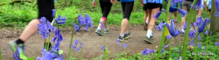 Bois de Hal 207 (joggeurs) 01-05-2017 10-16-08