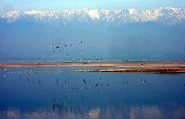 Pong Lake Sanctuary Lake