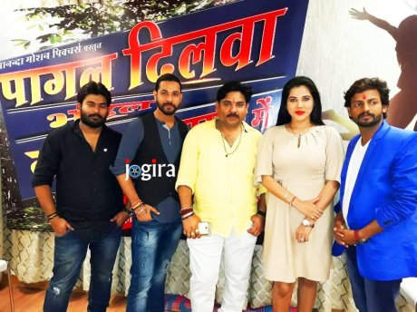 bhojpuri film pagal dilwa bhail tohara pyar mein HD wallpaper
