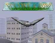 Simulador – Voar como um Pássaro