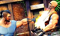 Jogar Luta de Kung Fu Gratis Online