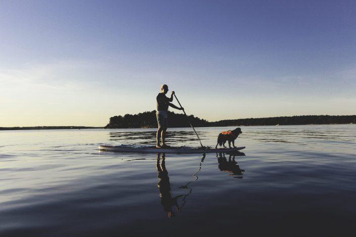 SUP paddling djurö
