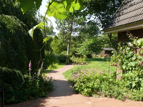 Sommer in Bothel 2011